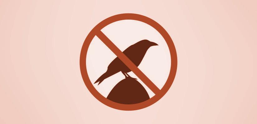 Interdit aux corbeaux - Ferme de Videau