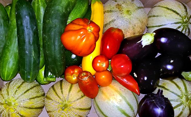 Panier de légumes bio - Ferme de Videau