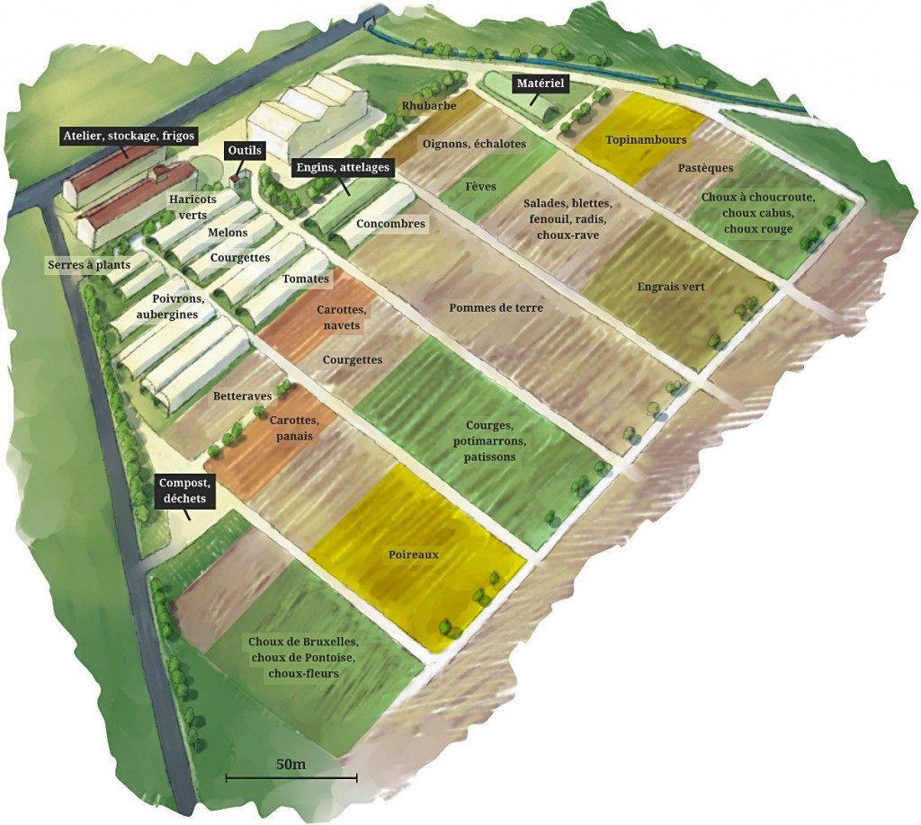 Plan jardin maraicher vu d'avion - Ferme de Videau